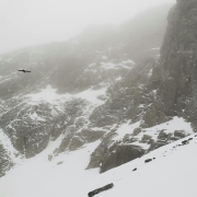 Winter Mountaineering on Ben Nevis & Aonach Mor